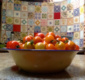 Urban Permaculture Gardening Tomatoes