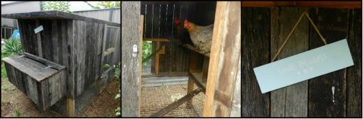 chickencoop3