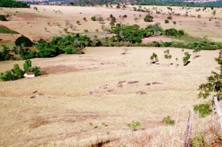 Ecocentro IPEC 1999