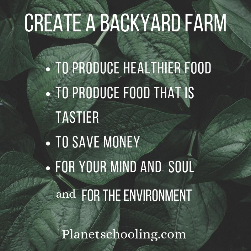 backyardfarm.png