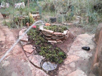 Planted herb spiral.