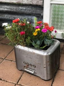 toaster garden