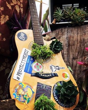 Guitar garden