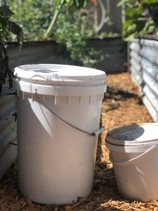 biofertilizer, waste free, sustainable living, homeschool, backyard farm, planet schooling